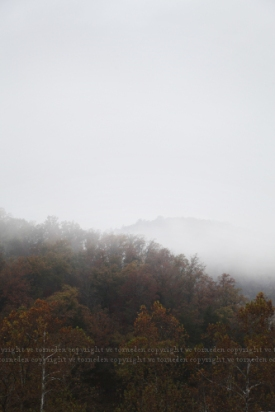 fog12post