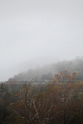 fog13post